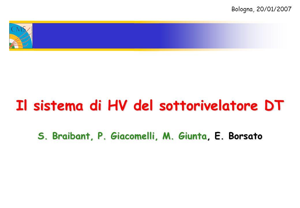 Il sistema di HV del sottorivelatore DT S.Braibant, P.