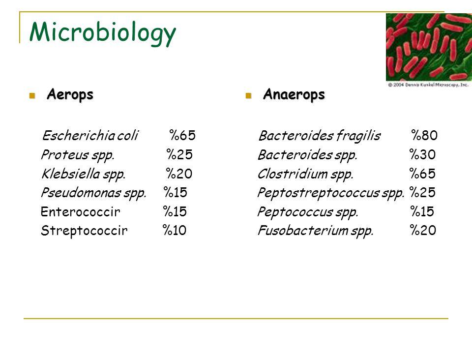 Microbiology Aerops Aerops Escherichia coli %65 Proteus spp. %25 Klebsiella spp. %20 Pseudomonas spp. %15 Enterococcir %15 Streptococcir %10 Anaerops