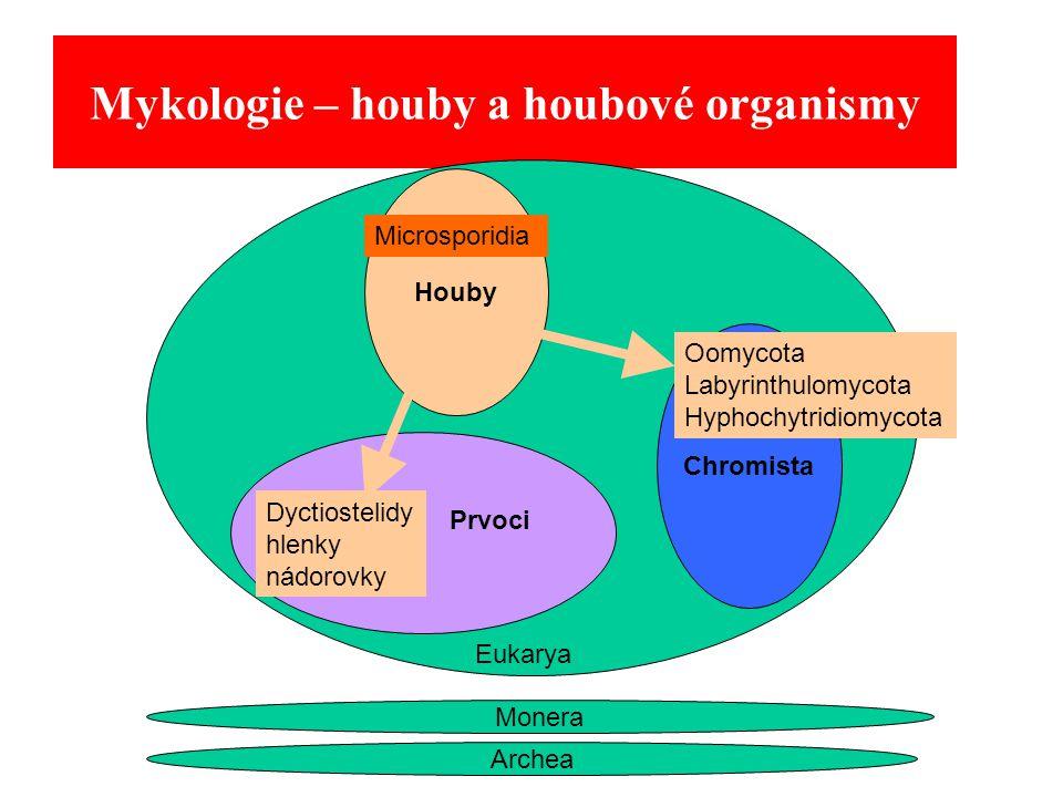 Mykologie – houby a houbové organismy Archea Monera Houby Eukarya Chromista Microsporidia Oomycota Labyrinthulomycota Hyphochytridiomycota Dyctiostelidy hlenky nádorovky Prvoci