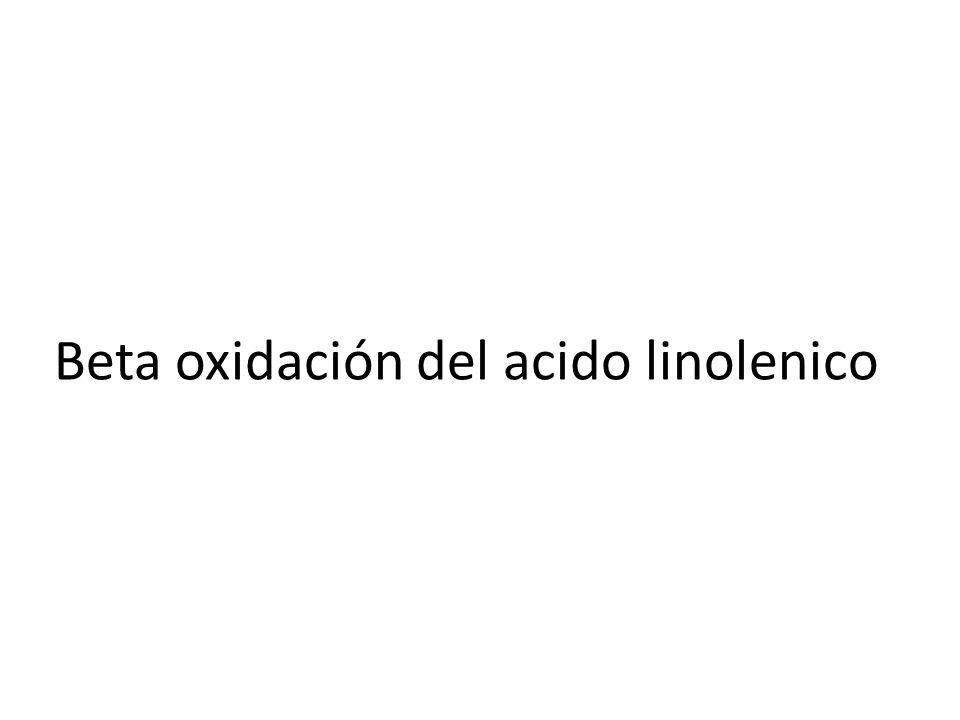 Total Opcion A Si glicerol de va a glucolisis es 19 Mas 139 de acido Linolenico Mas 129 Palmitico Mas 68 Pelargonico =355 ATP