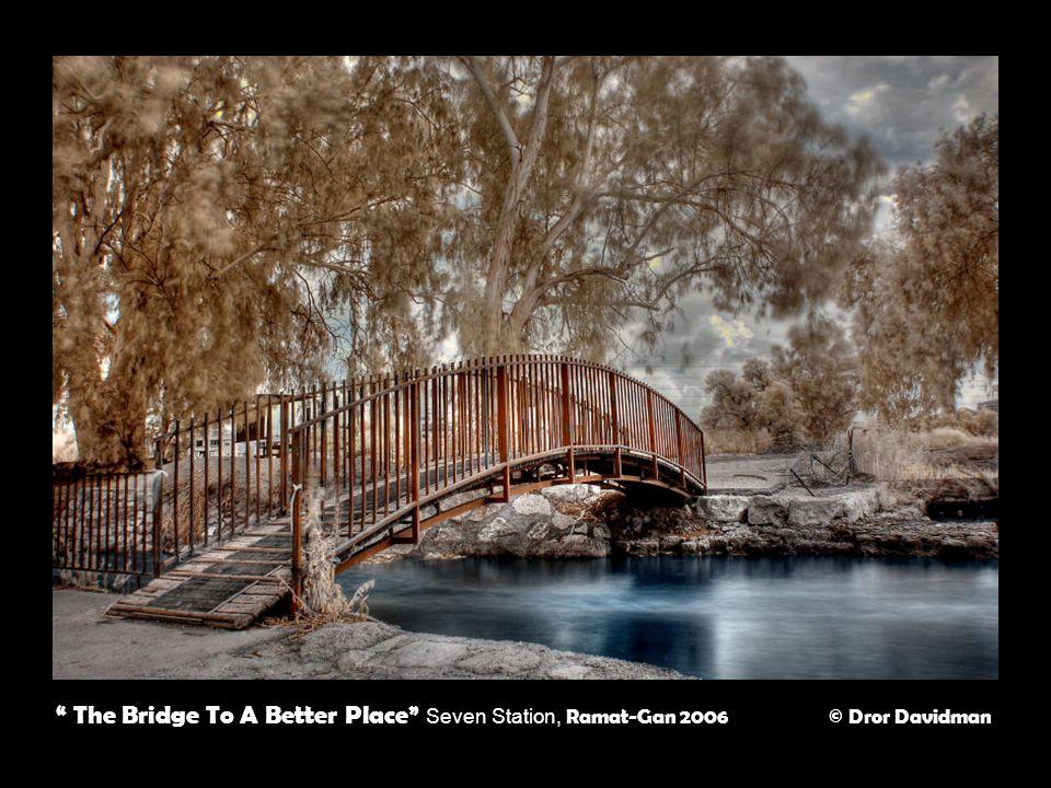 The Bridge To A Better Place Seven Station, Ramat-Gan 2006 © Dror Davidman