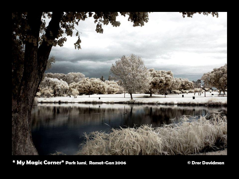 My Magic Corner Park lumi, Ramat-Gan 2006 © Dror Davidman