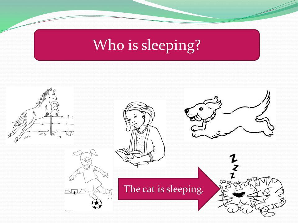 Who is sleeping? The cat is sleeping.