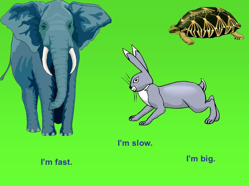 I'm fast. I'm slow. I'm big.
