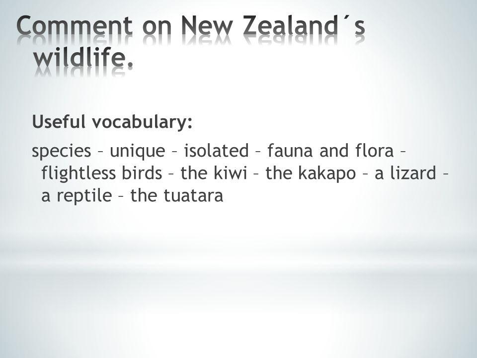 Useful vocabulary: species – unique – isolated – fauna and flora – flightless birds – the kiwi – the kakapo – a lizard – a reptile – the tuatara