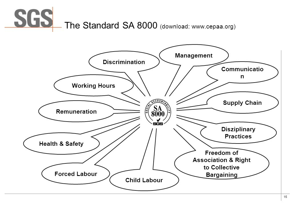 15 The Standard SA 8000 (download: www.cepaa.org) Discrimination Management Communicatio n Working Hours Remuneration Health & Safety Supply Chain Dis