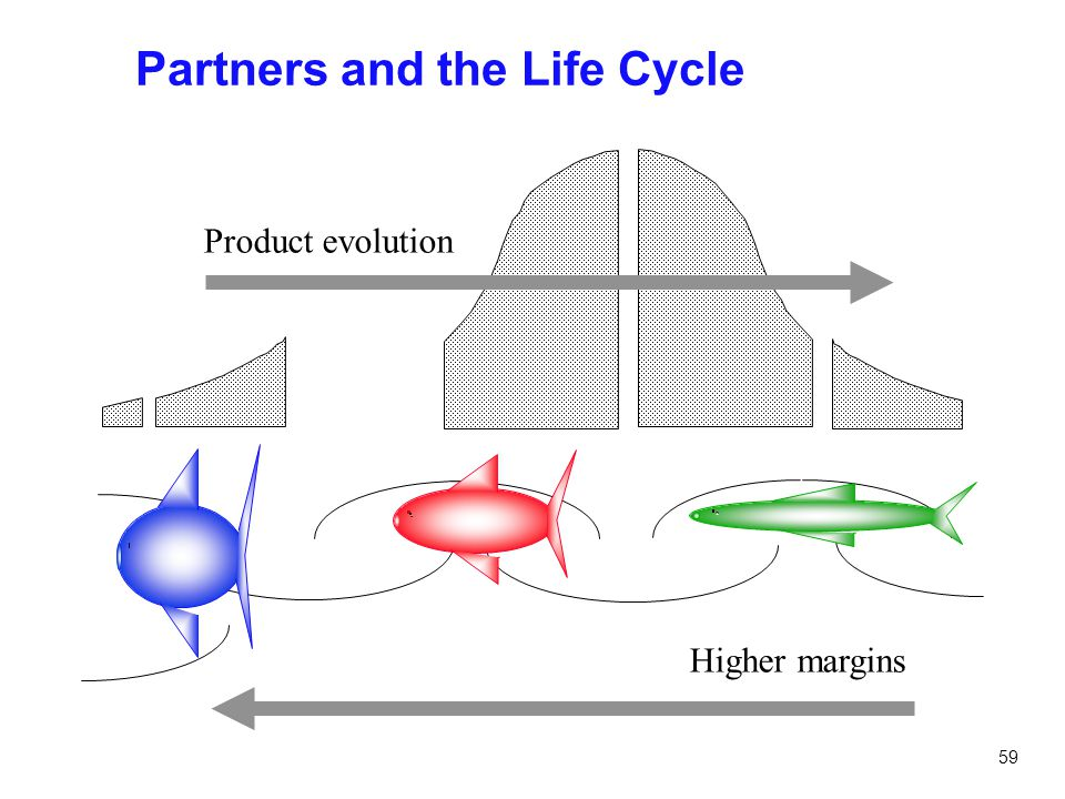 59 Partners and the Life Cycle Product evolution Higher margins