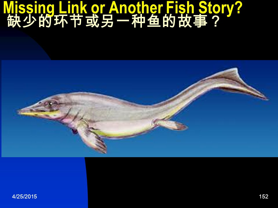 4/25/2015152 Missing Link or Another Fish Story 缺少的环节或另一种鱼的故事?