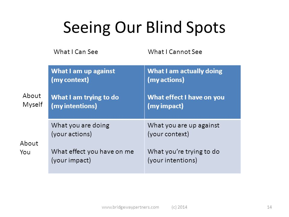 Seeing Our Blind Spots www.bridgewaypartners.com (c) 201414 What I am up against (my context) What I am trying to do (my intentions) What I am actually doing (my actions) What effect I have on you (my impact) What you are doing (your actions) What effect you have on me (your impact) What you are up against (your context) What you're trying to do (your intentions) About Myself About You What I Can See What I Cannot See