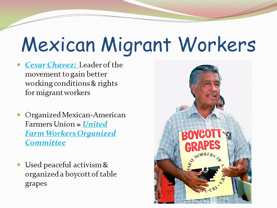 Mexican Migrant Workers Cesar Chavez: Leader of the movement to gain better working conditions & rights for migrant workers Organized Mexican-American