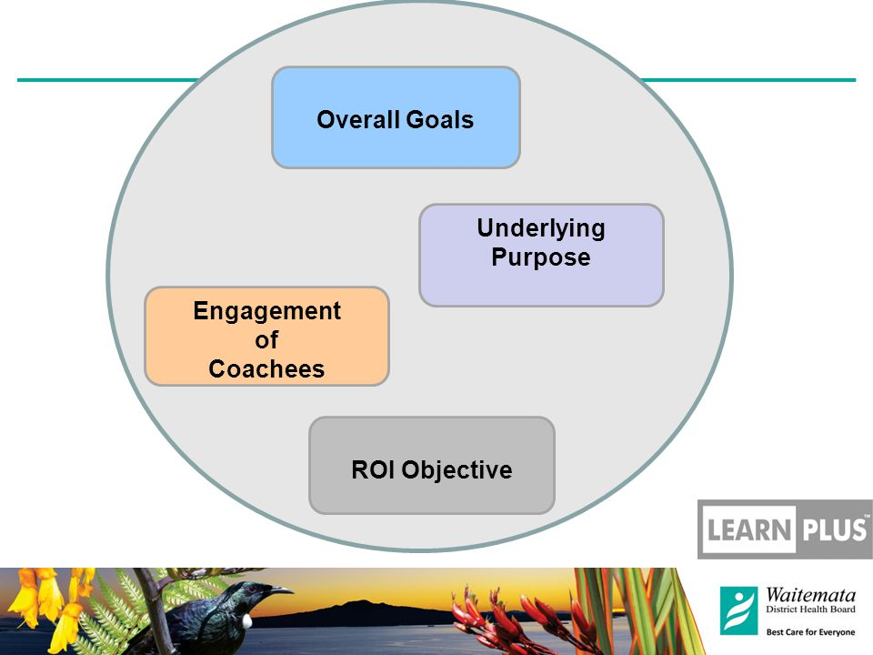 Engagement of Coachees Underlying Purpose Overall Goals ROI Objective