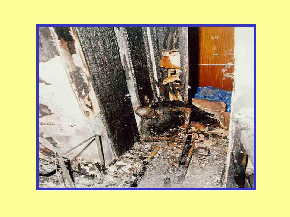Fire / Explosion Fire Dept.