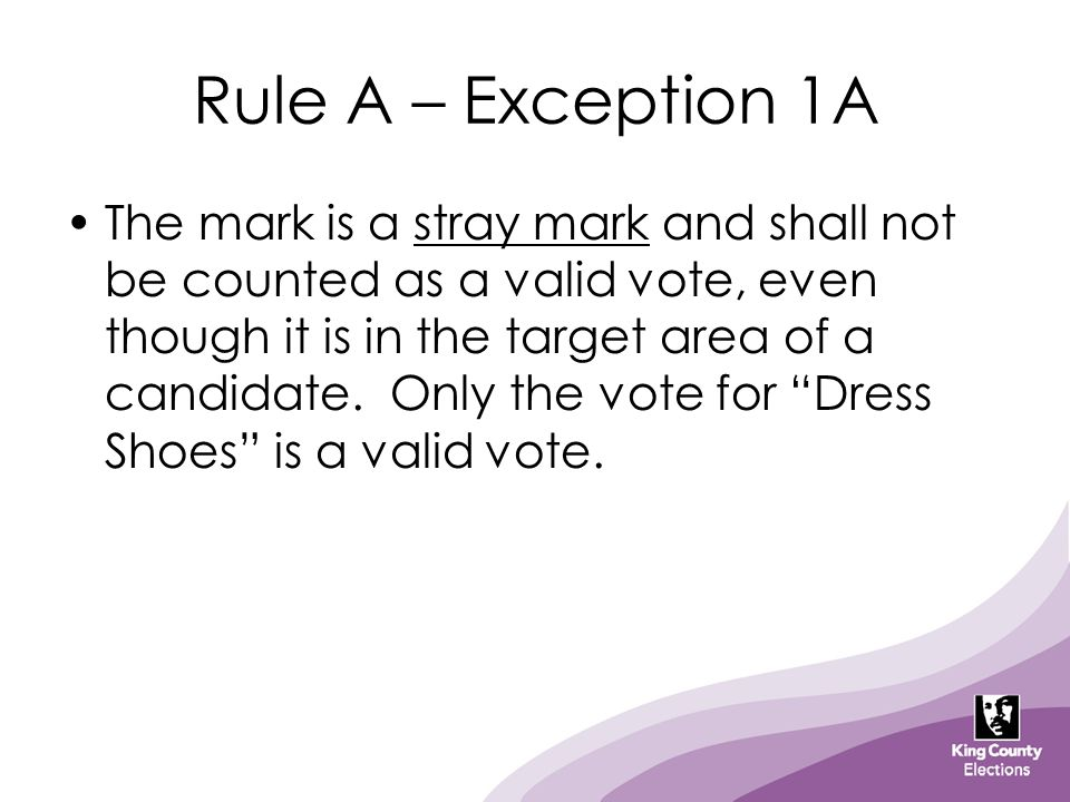 Rule A – Exception 1A The mark is a stray mark and shall not be counted as a valid vote, even though it is in the target area of a candidate. Only the