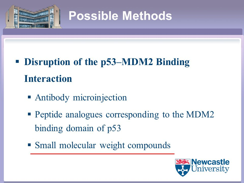 Possible Methods  Disruption of the p53–MDM2 Binding Interaction  Antibody microinjection  Peptide analogues corresponding to the MDM2 binding domain of p53  Small molecular weight compounds