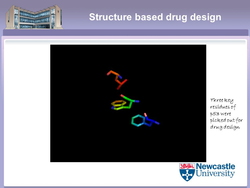 Structure based drug design Three key residues of p53 were picked out for drug design