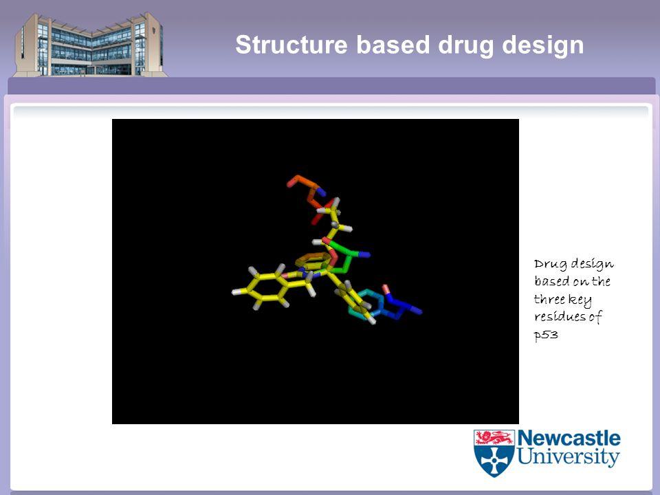 Structure based drug design Drug design based on the three key residues of p53