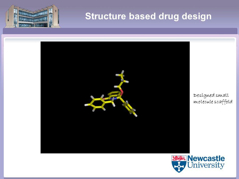 Structure based drug design Designed small molecule scaffold