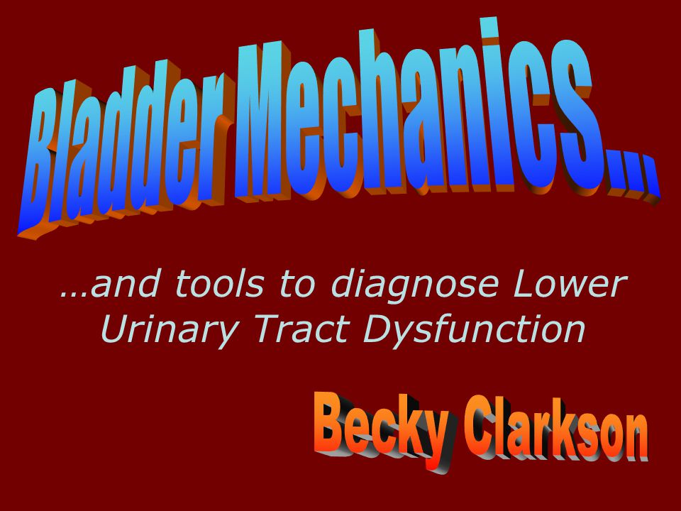 …and tools to diagnose Lower Urinary Tract Dysfunction