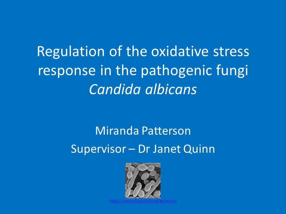 Regulation of the oxidative stress response in the pathogenic fungi Candida albicans Miranda Patterson Supervisor – Dr Janet Quinn http://www.chuv.ch/imul/euresfun