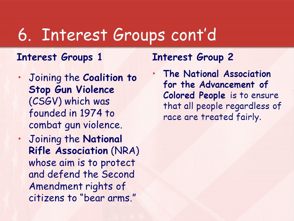 6.Interest Groups Lastly, American citizens can also join or support interest groups in the USA.