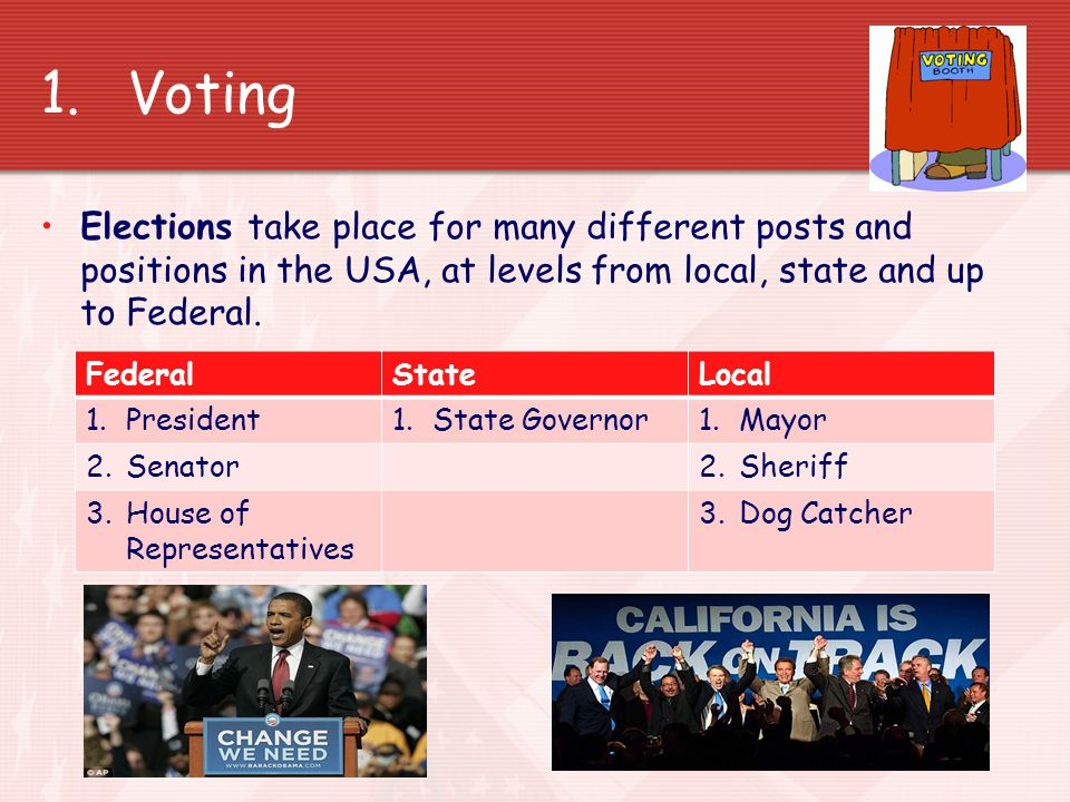 Political Participation in the USA In what ways can American citizens participate in politics
