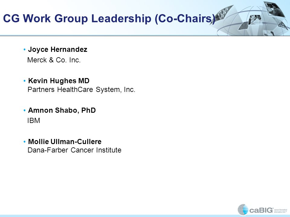 CG Work Group Leadership (Co-Chairs) Joyce Hernandez Merck & Co. Inc. Kevin Hughes MD Partners HealthCare System, Inc. Amnon Shabo, PhD IBM Mollie Ull