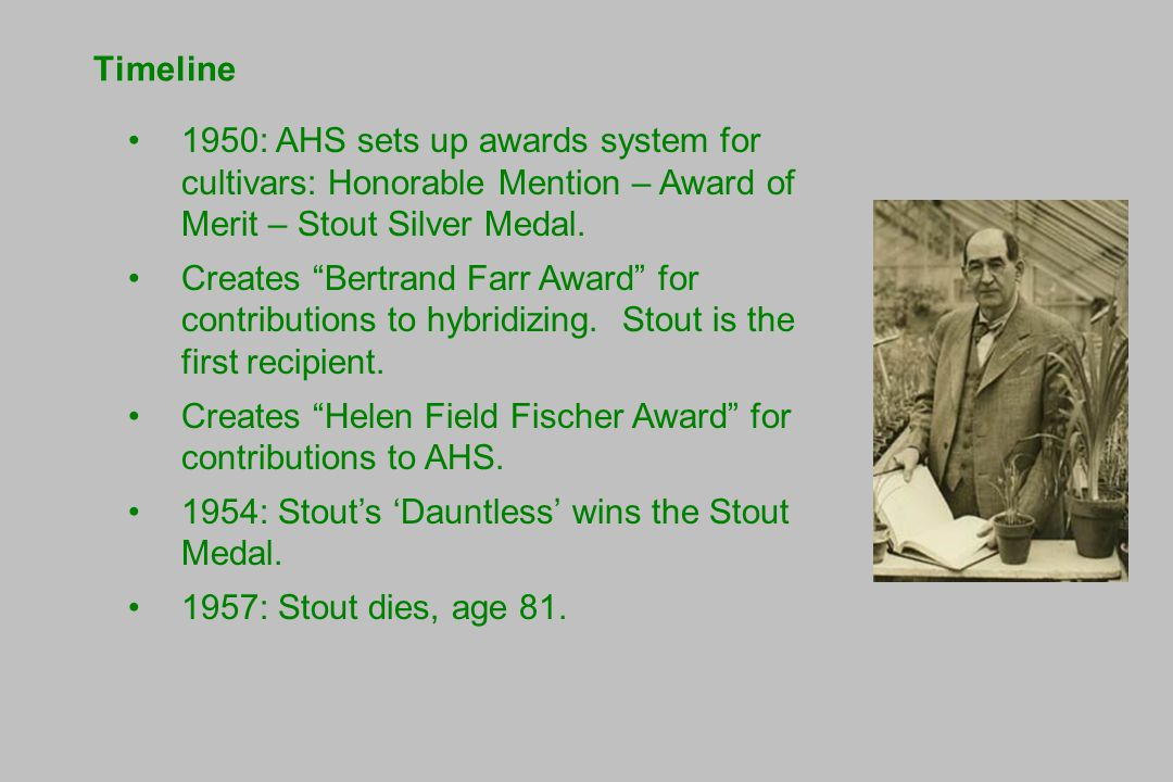 Timeline 1950: AHS sets up awards system for cultivars: Honorable Mention – Award of Merit – Stout Silver Medal.