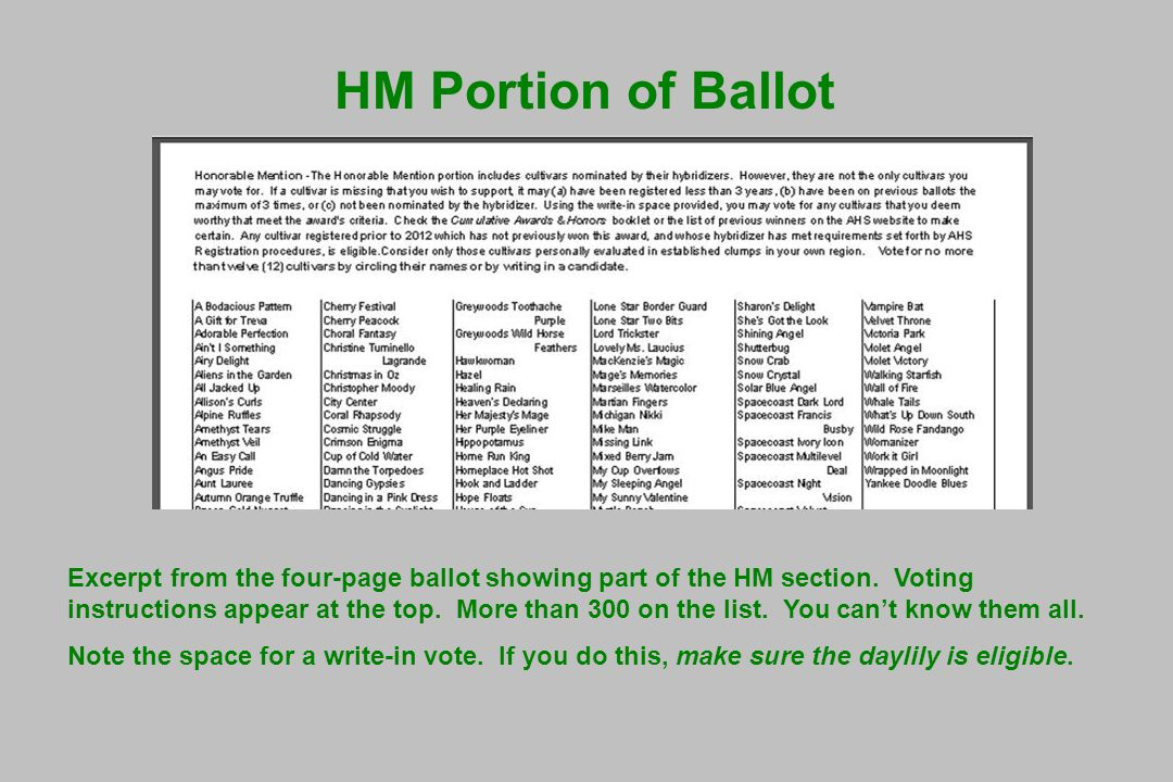 HM Portion of Ballot Excerpt from the four-page ballot showing part of the HM section.