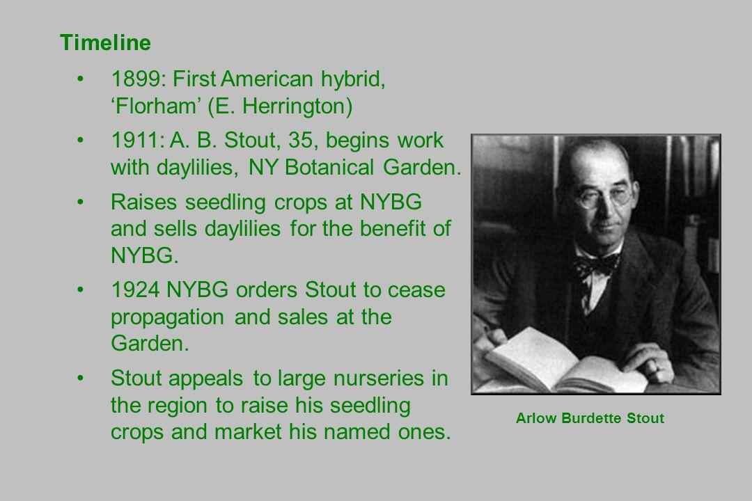 Timeline 1899: First American hybrid, 'Florham' (E.