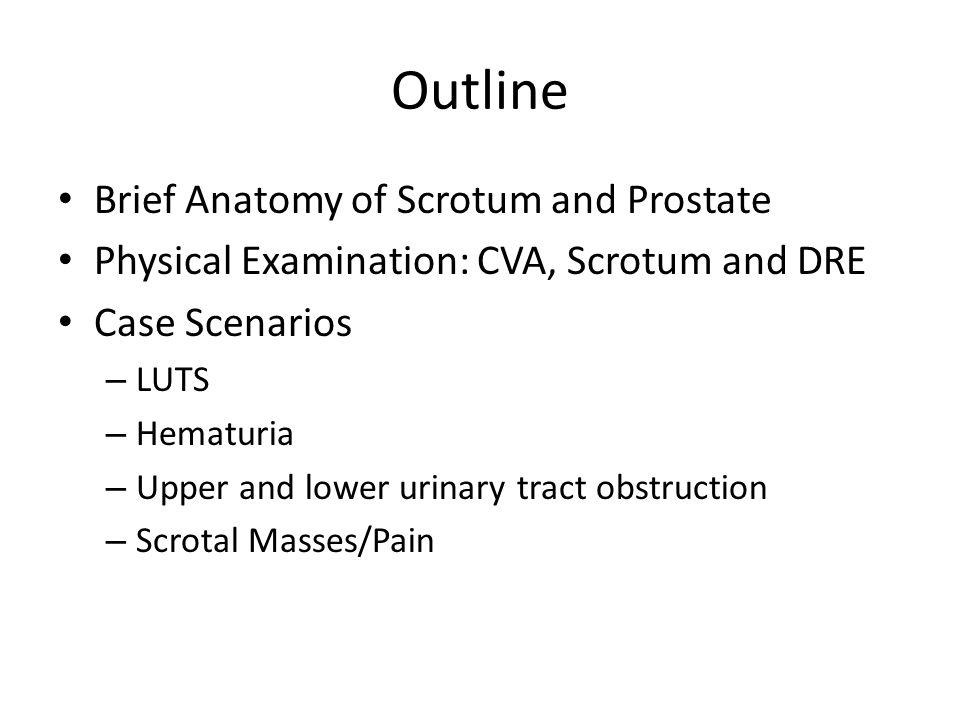 Outline Brief Anatomy of Scrotum and Prostate Physical Examination: CVA, Scrotum and DRE Case Scenarios – LUTS – Hematuria – Upper and lower urinary tract obstruction – Scrotal Masses/Pain