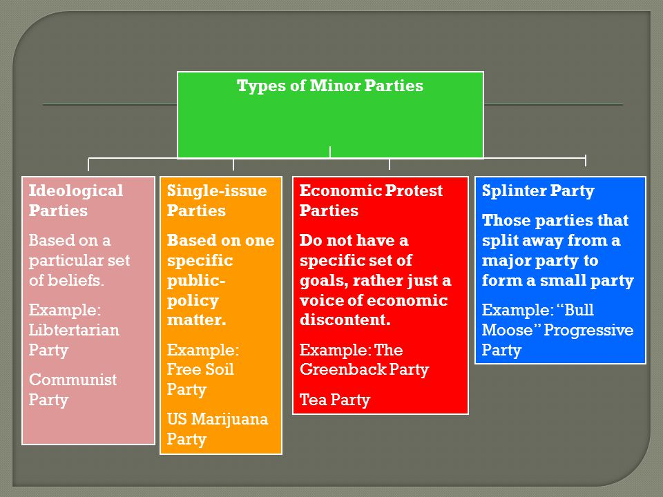 Splinter Party Those parties that split away from a major party to form a small party Example: Bull Moose Progressive Party Economic Protest Parties Do not have a specific set of goals, rather just a voice of economic discontent.