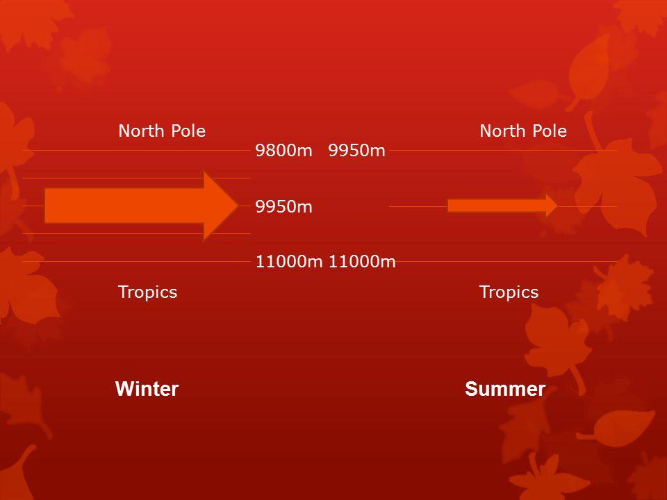 North Pole Tropics North Pole Tropics 11000m 9800m 9950m 11000m 9950m Winter Summer