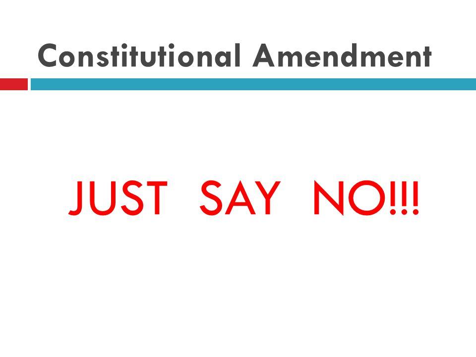 Constitutional Amendment JUST SAY NO!!!