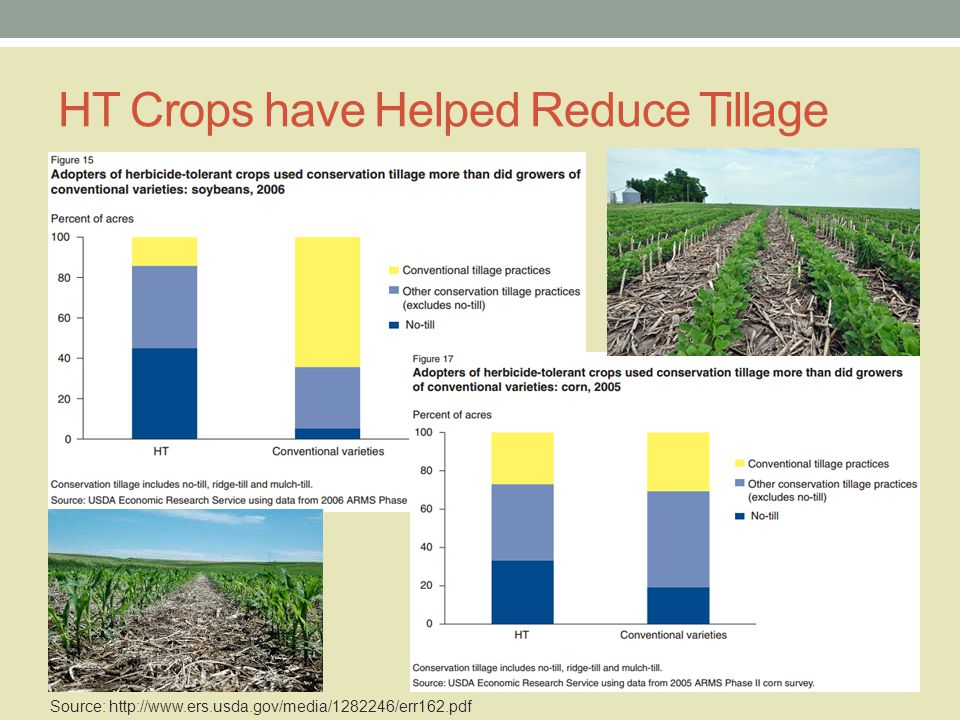 HT Crops have Helped Reduce Tillage Source: http://www.ers.usda.gov/media/1282246/err162.pdf