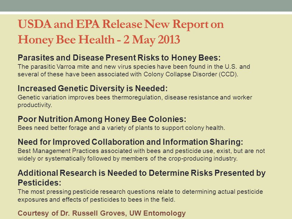 USDA and EPA Release New Report on Honey Bee Health - 2 May 2013 Parasites and Disease Present Risks to Honey Bees: The parasitic Varroa mite and new virus species have been found in the U.S.
