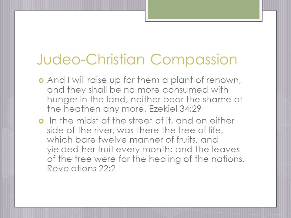 Judeo-Christian Compassion  And I will raise up for them a plant of renown, and they shall be no more consumed with hunger in the land, neither bear the shame of the heathen any more.