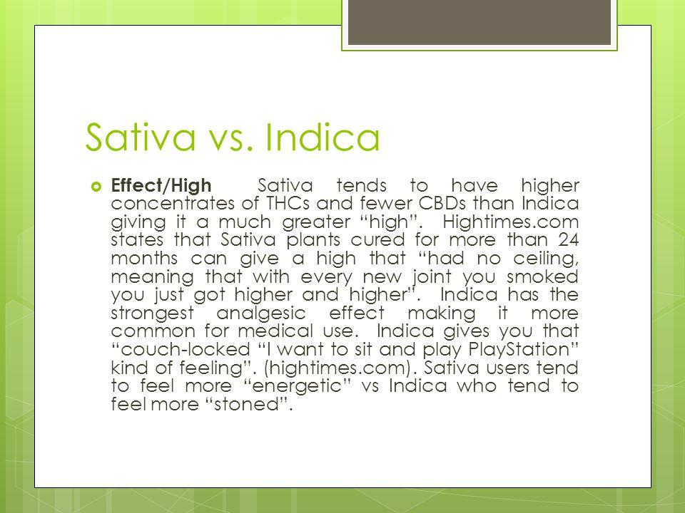 Sativa vs. Indica