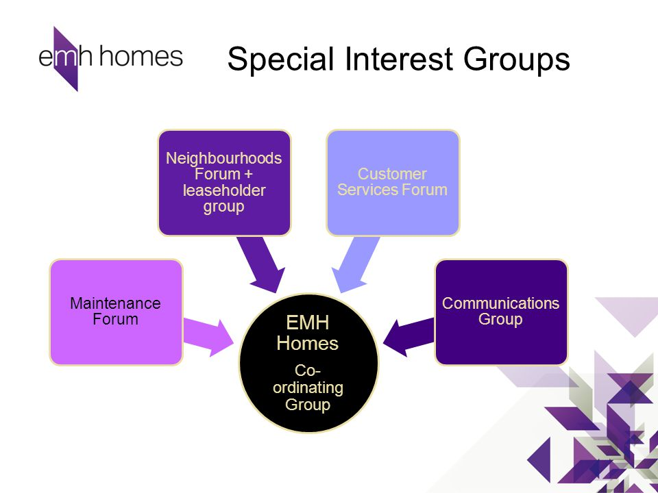 Special Interest Groups EMH Homes Co- ordinating Group Maintenance Forum Neighbourhoods Forum + leaseholder group Customer Services Forum Communicatio