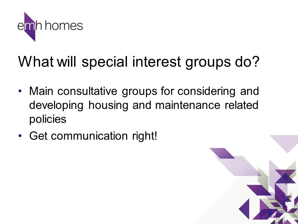 What will special interest groups do? Main consultative groups for considering and developing housing and maintenance related policies Get communicati