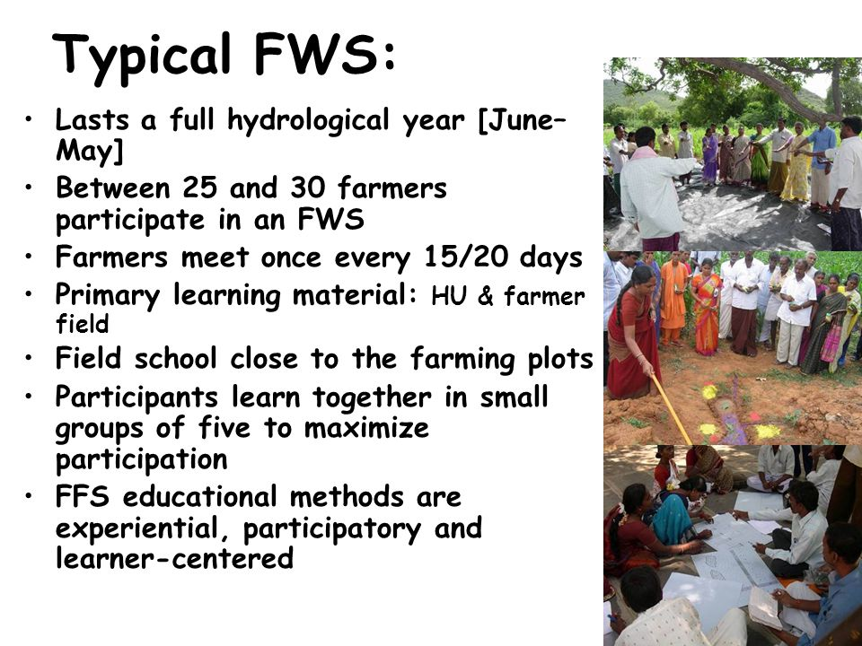 Typical FWS: Lasts a full hydrological year [June– May] Between 25 and 30 farmers participate in an FWS Farmers meet once every 15/20 days Primary learning material: HU & farmer field Field school close to the farming plots Participants learn together in small groups of five to maximize participation FFS educational methods are experiential, participatory and learner-centered