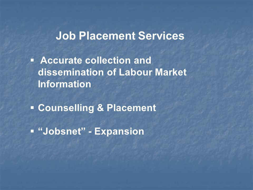 Job Placement Services  Accurate collection and dissemination of Labour Market Information  Counselling & Placement  Jobsnet - Expansion