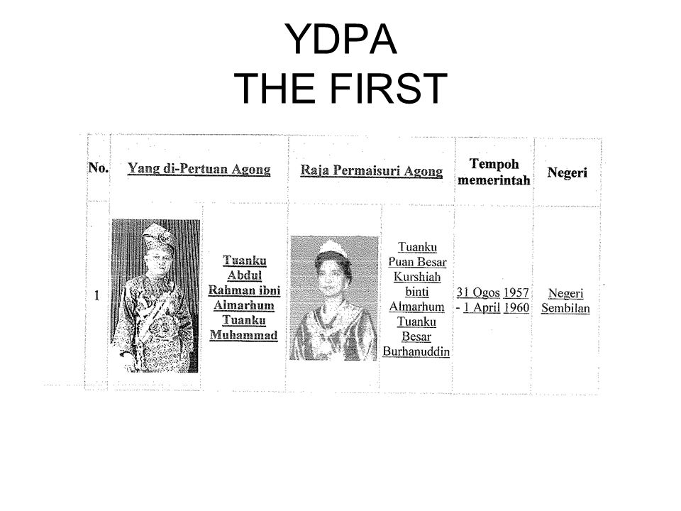 YDPA THE FIRST