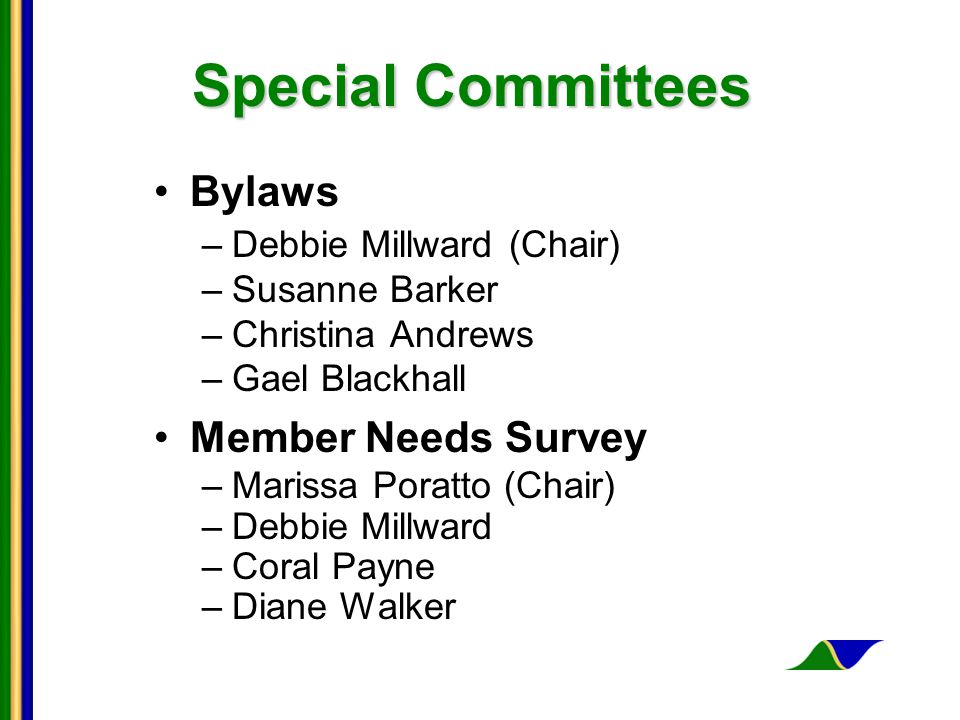 Special Committees Bylaws –Debbie Millward (Chair) –Susanne Barker –Christina Andrews –Gael Blackhall Member Needs Survey –Marissa Poratto (Chair) –Debbie Millward –Coral Payne –Diane Walker
