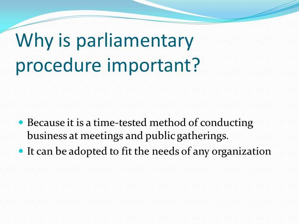 Why is parliamentary procedure important.