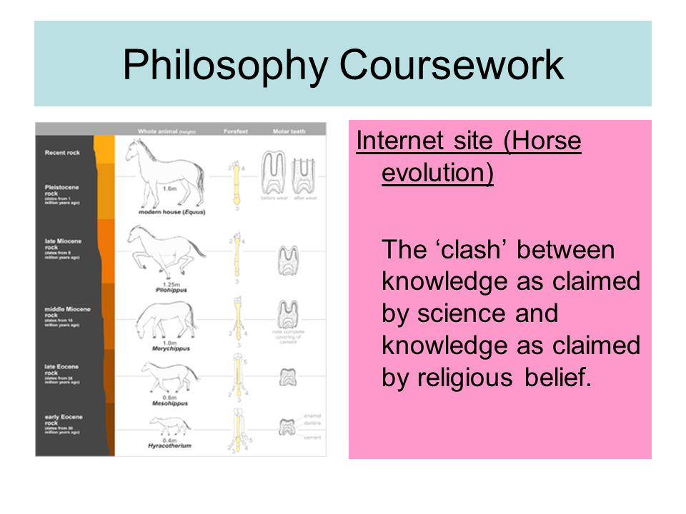 Philosophy Coursework Internet site (Horse evolution) The 'clash' between knowledge as claimed by science and knowledge as claimed by religious belief.