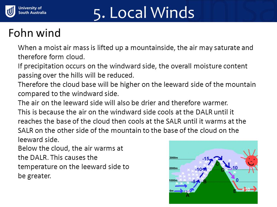 5. Local Winds Fohn wind When a moist air mass is lifted up a mountainside, the air may saturate and therefore form cloud. If precipitation occurs on