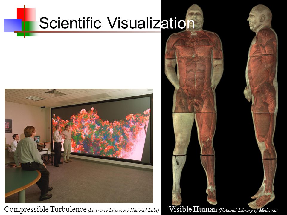 Visible Human (National Library of Medicine) Scientific Visualization Compressible Turbulence (Lawrence Livermore National Labs)