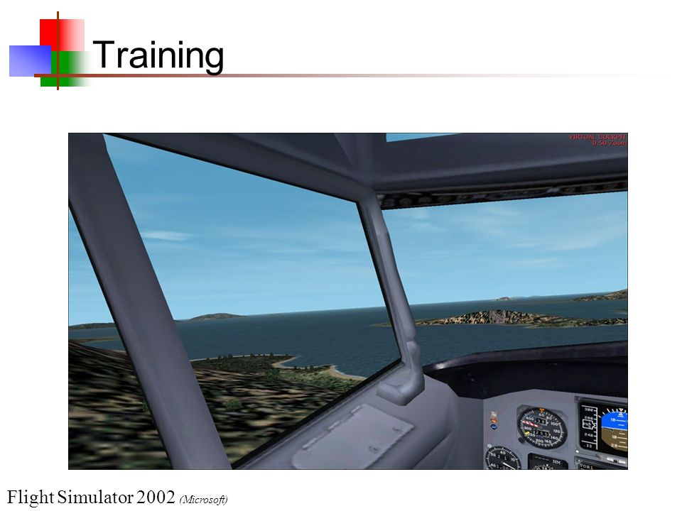 Training Flight Simulator 2002 (Microsoft)