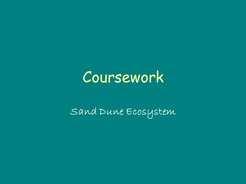 Coursework Sand Dune Ecosystem