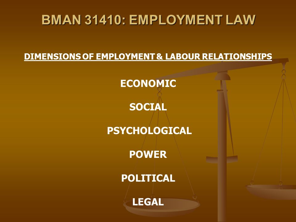 BMAN 31410: EMPLOYMENT LAW DIMENSIONS OF EMPLOYMENT & LABOUR RELATIONSHIPS ECONOMIC SOCIAL PSYCHOLOGICAL POWER POLITICAL LEGAL